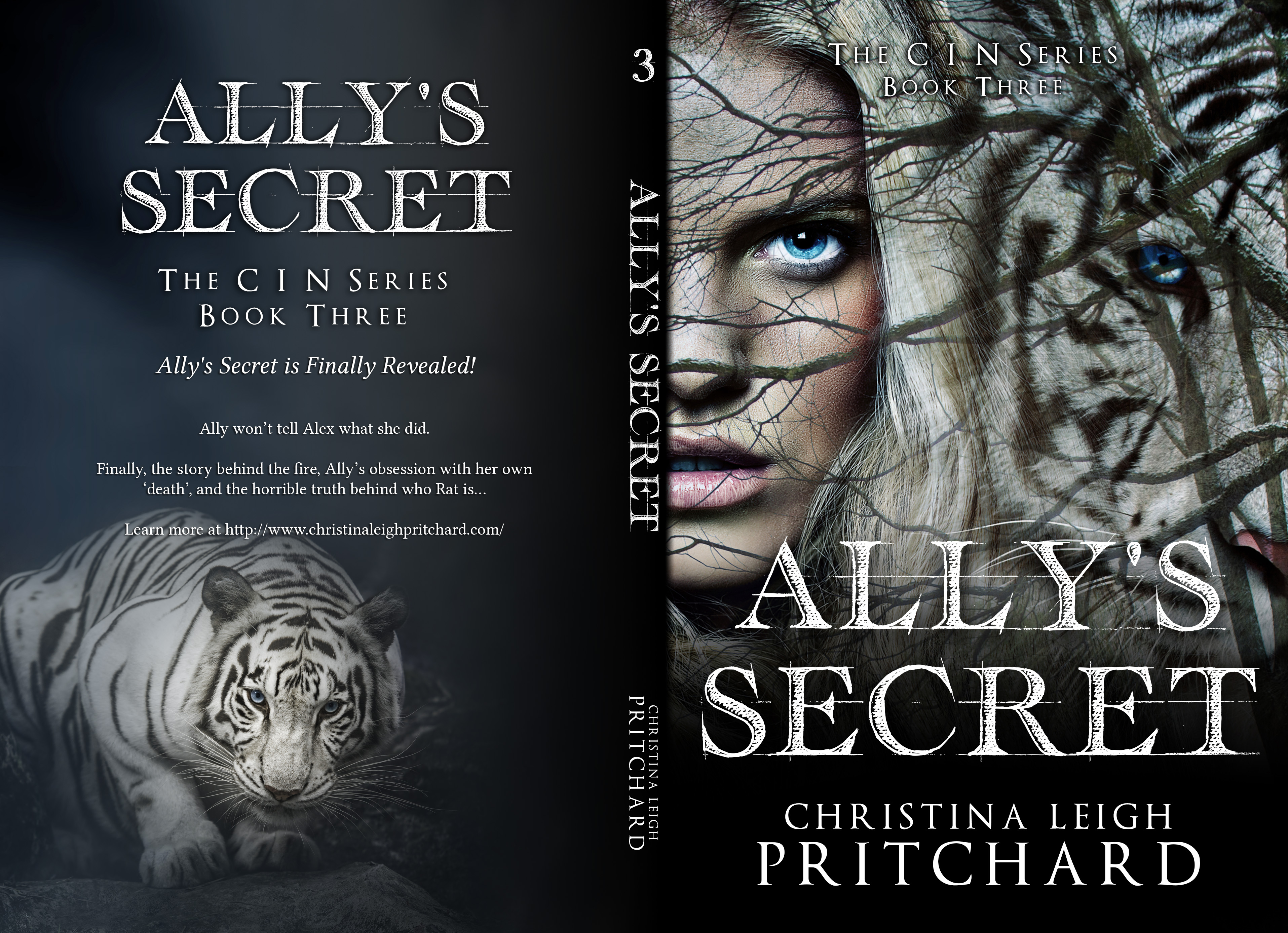 allys_secret bk cover